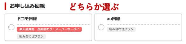 楽天モバイルの申込みの流れ・手順3