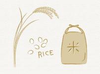 お米を少しでも安くお得に購入して節約する方法
